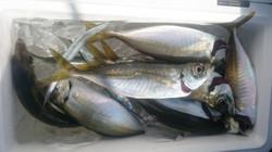 Familyfishing11